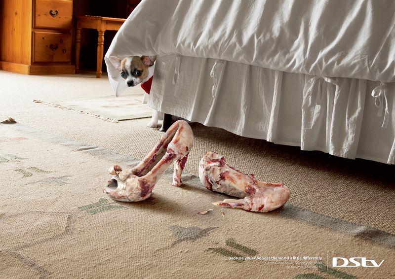 Helpless Dog Ads