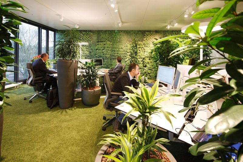 Overflowing Foliage Offices