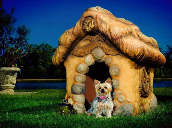 eco-friendly dog houses