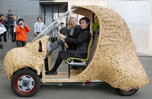 Ecoweird Bamboo Cars