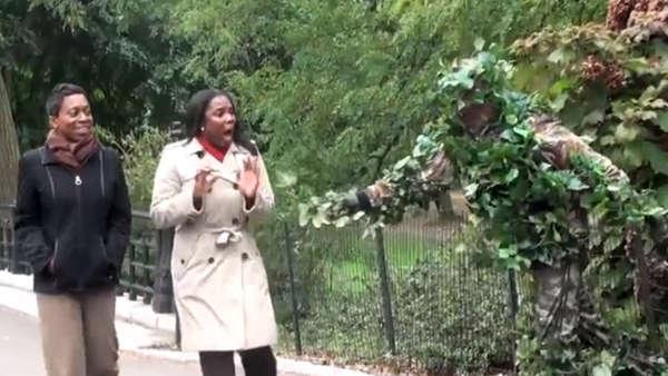 Costumed Central Park Pranks
