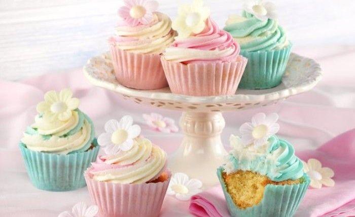Sweet Cupcake Cases