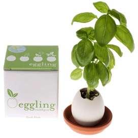 Egglings