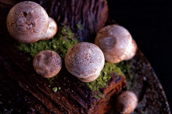 Mushroom-Covered Cakes