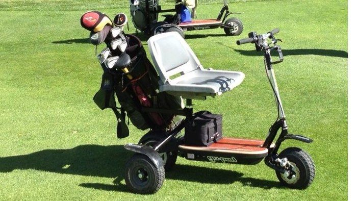 Electric Golf Carts Electric Golf Cart