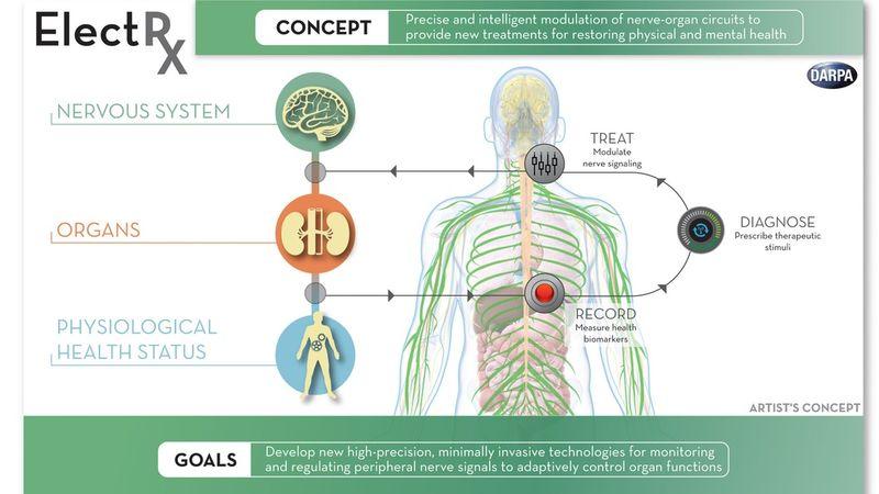Self-Healing Body Technology : electrx