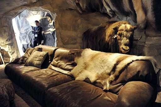 Crafty Caveman Interiors