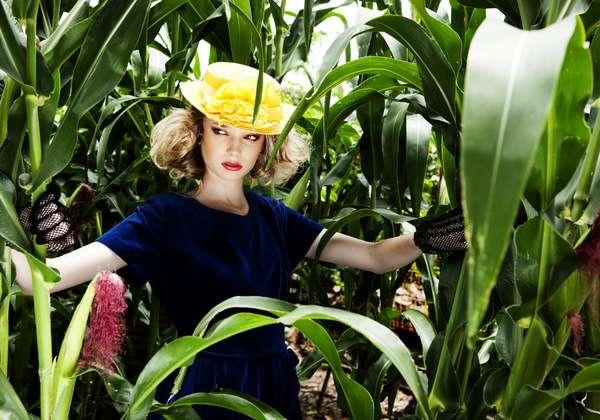Vibrant Fairy Tale Photos