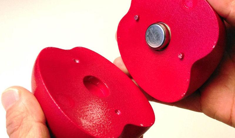 Fruit-Monitoring Sensors