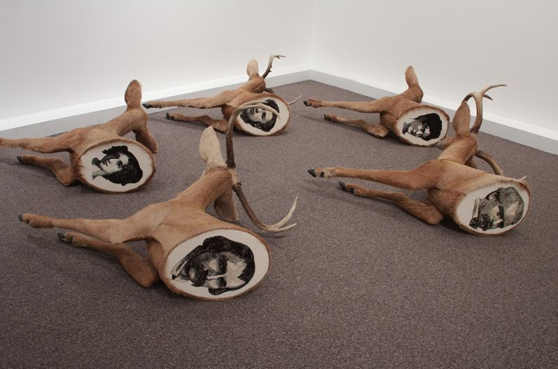 Embroidered Taxidermy Art