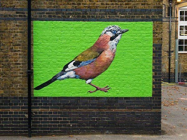 Endangered Avian Murals