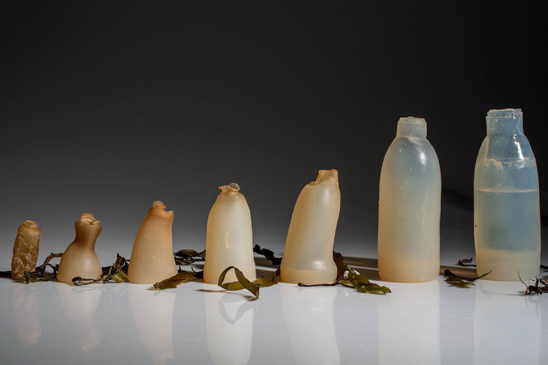 Biodegradable Algae Bottles