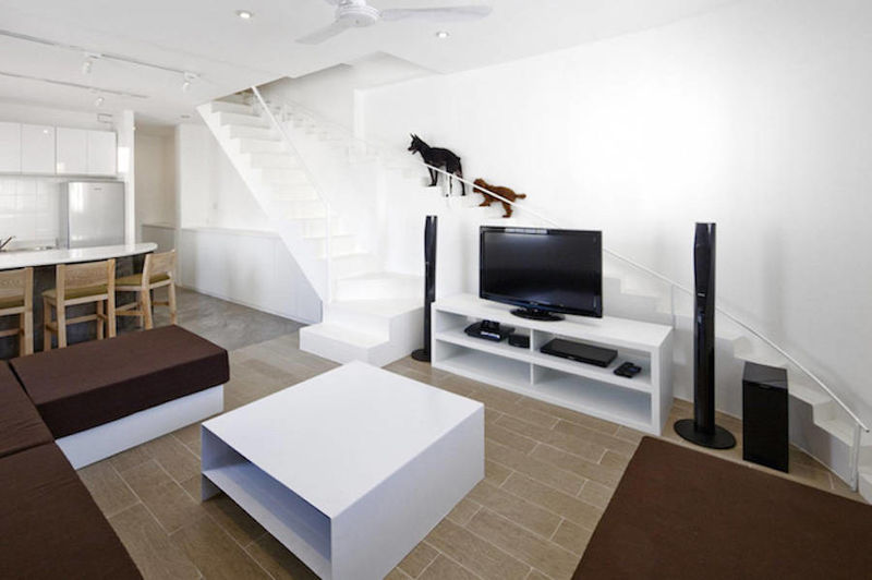 Pet-Focused Staircases