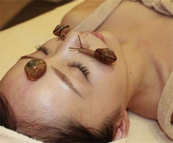 escargot beauty treatment