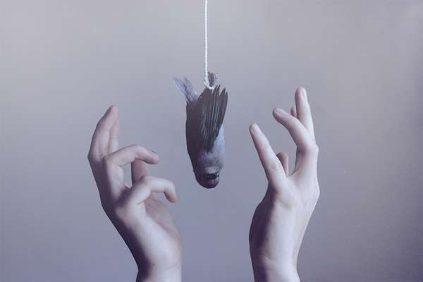 Surreal Hanging Object Photography