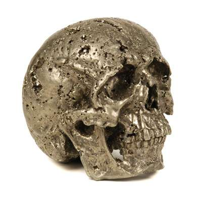 Evolution Pyrite Skull