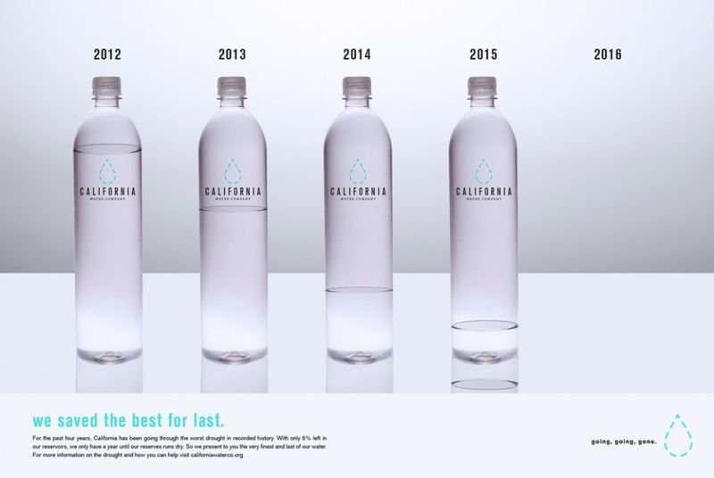 Conservation-Supporting Water Bottles