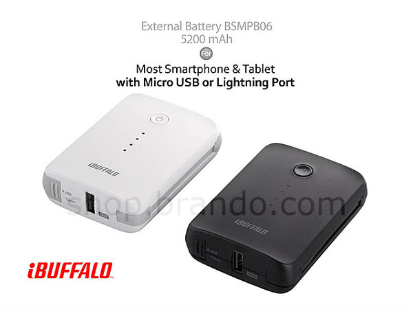 Conveniently Concealed Battery Packs