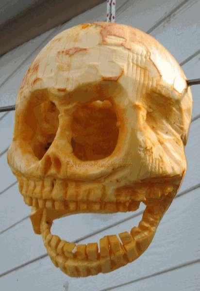 Extreme Pumpkins Coolest Carvings Amp Contests
