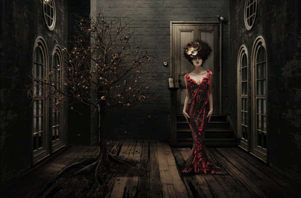 Darkly Opulent Photography
