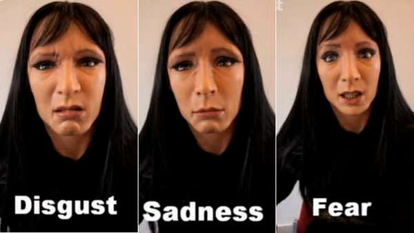 Facial Expressions Synthesis