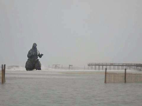 Fake Hurricane Sandy Photos