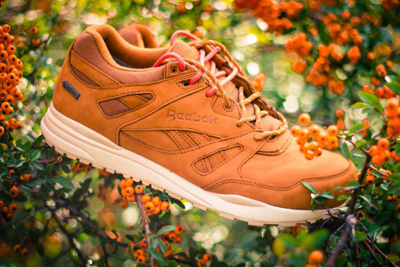 Weatherproof Gore-Tex Shoes