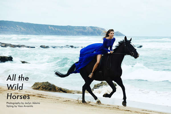 Fashion Gone Rogue 'All the Wild Horses'