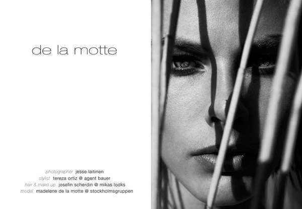 Fashion Gone Rogue de la Motte