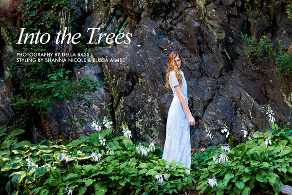 Fashion Gone Rogue 'Into the Trees'