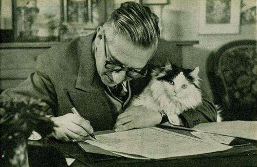 Feline-Friendly Writers