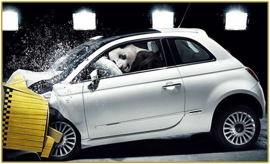 Crash Test Pandas