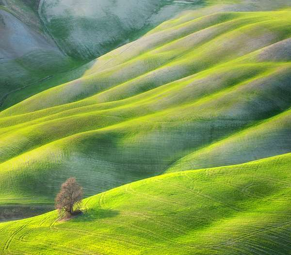 Fields by Marcin Sobas