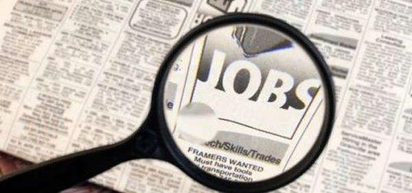 Job Search Assisting Banks