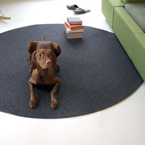 Funky Felt Floor Coverings