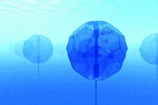 Fish Matrix Systems