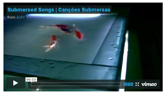 Music Remixes from Fish Movements