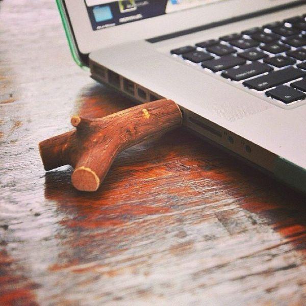 Twig Memory Sticks
