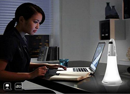 Dual-Purpose Desk Lamps