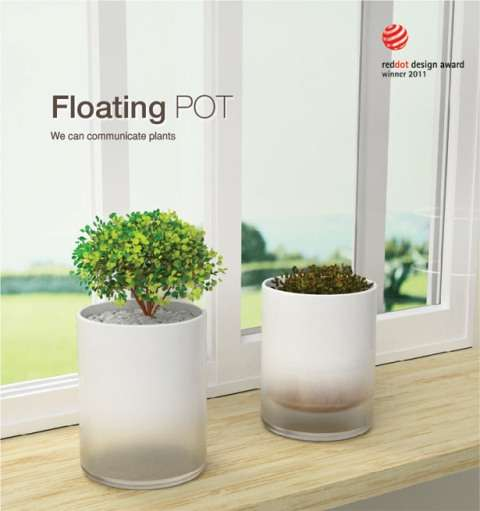Dehydrated Flower Pots