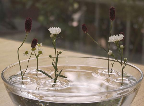 Floating Flower Vases