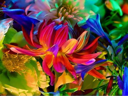Polychromatic Floral Pictorials