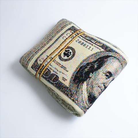 Folded Banknote Pillow