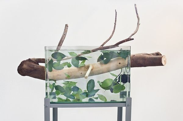 Surreal Water-Involving Sculptures