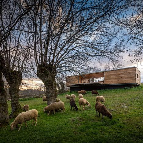 Wood-Based Woodland Retreats
