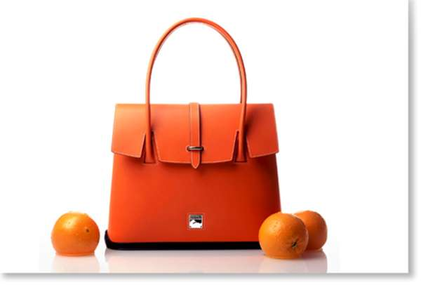 Citrus Handbags