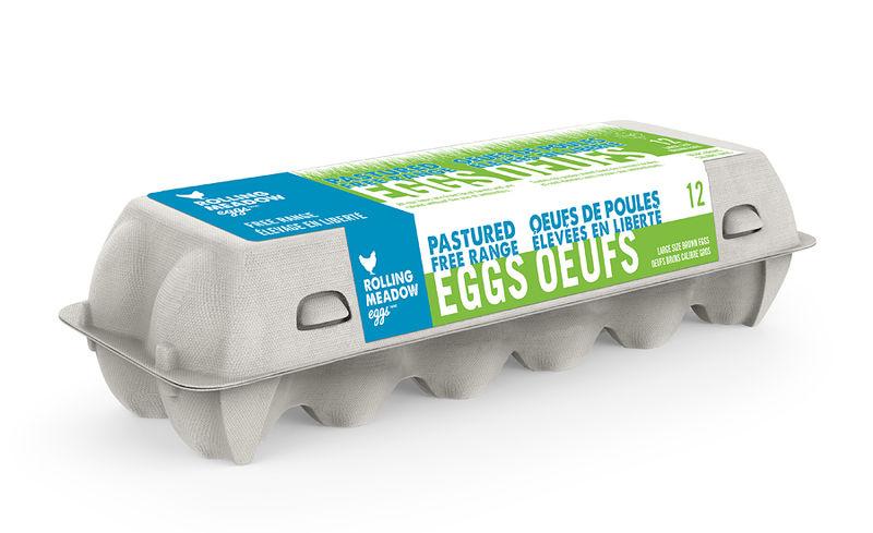 High-Quality Amish Farm Eggs
