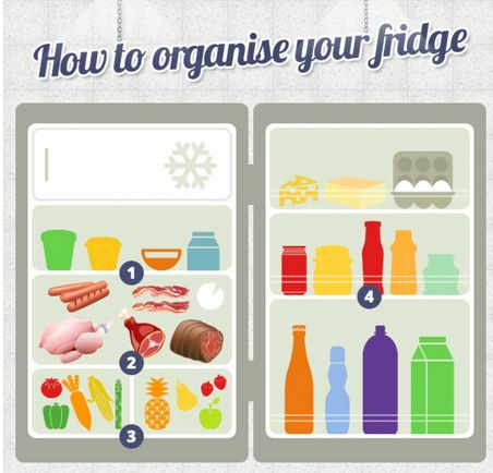 Organizational Fridge Infographics