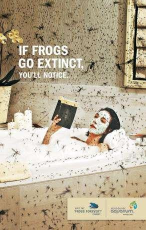 Animal Extinction Awareness Ads