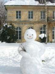 $10,000 Snowman Stolen